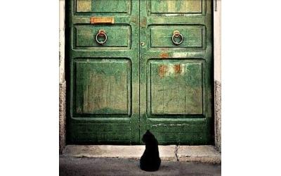 Zamanı Gelince Bir Kapı Açılır