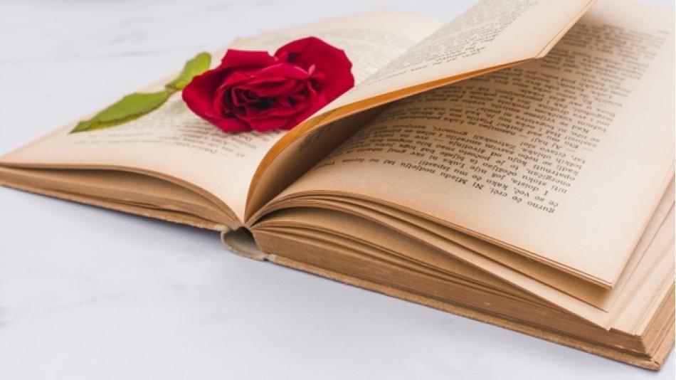 Kitap ve Kırmızı Gül